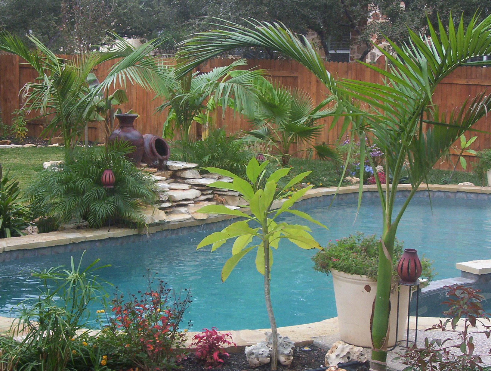 Tropical Pool and Spa with Unique Water Feature