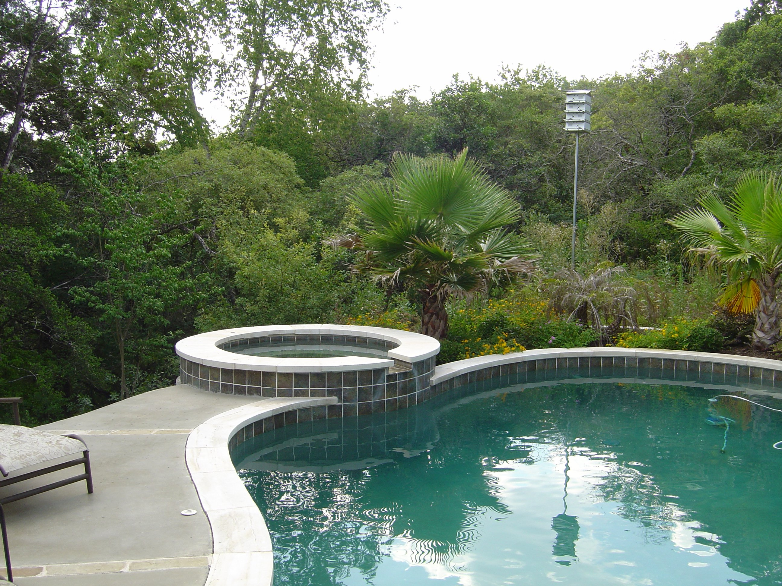 Pool with Raised Spa, Stained Concrete Deck and Black Bottom.